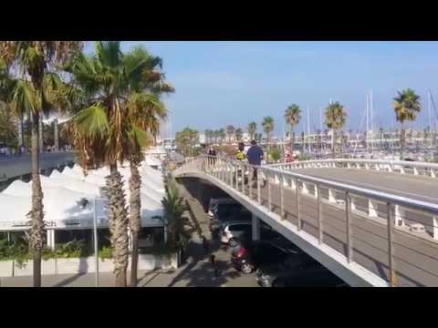 harden, un peligro: casi se cae de un puente