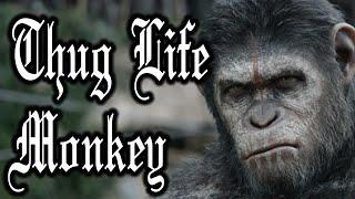 Thug Life Monkey