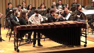 Bach Violin Concerto in a minor(marimba) performed by Alex Mirzabeigi & LA Sinfonitta