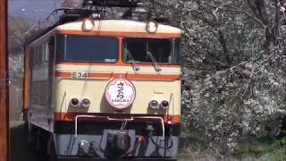 大井川鉄道 臨時ELサクラ急行(E31形E34)20190405-06