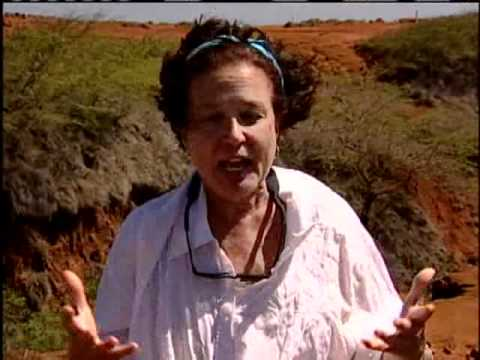 Kahoolawe Reborn Part 2