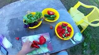 Летний салат! ( помидор, огурец, кинза, базилик 2 вида, сметана)