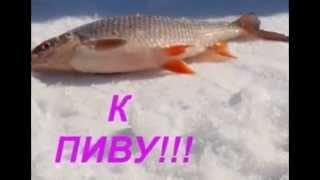 зимова риболовля Х