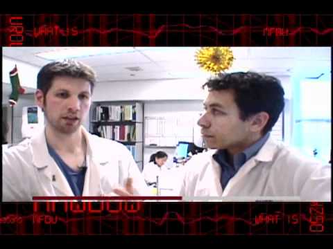 04 - What Is Urology - SCOPE OF UROLOGY