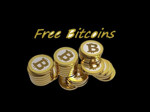 Fut bitcoins for free bradley rotter bitcoins