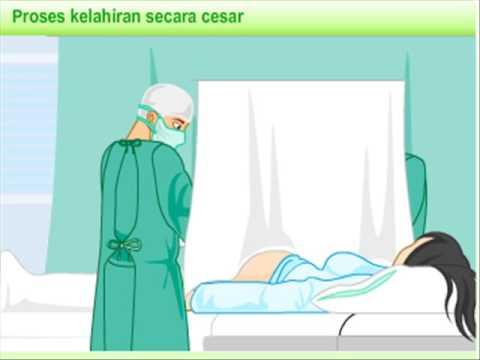 7800 Gambar Kartun Muslimah Hamil Terbaru