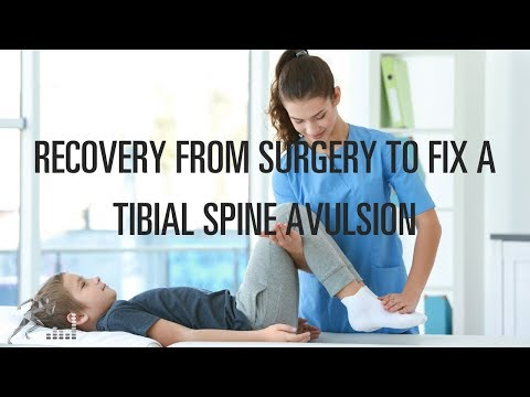 What is the recovery from a tibial spine avulsion?