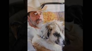Jeffrey Dean Morgan and dogs :)