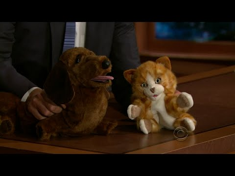 Late Late Show with Craig Ferguson 7/30/2010 Mary Lynn Rajskub, Christopher Gorham