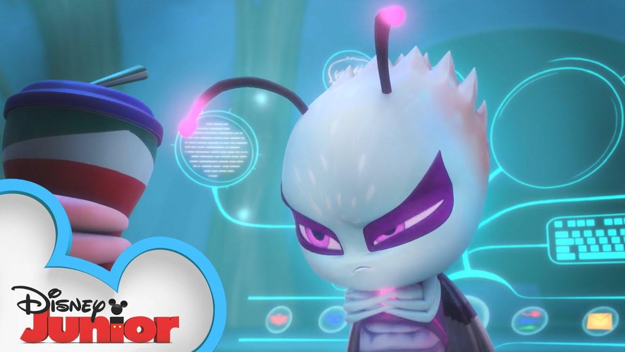 Download Minding Motsuki   PJ Masks   Disney Junior
