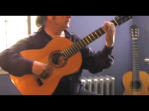 Malagueña - Dennis Koster - 1951 Marcelo Barbero guitar