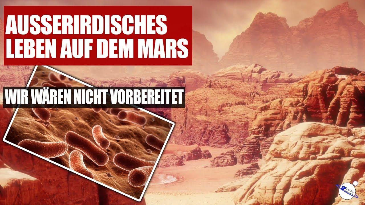 Ausserirdisches Leben auf dem Mars - Wir wären nicht vorbereitet