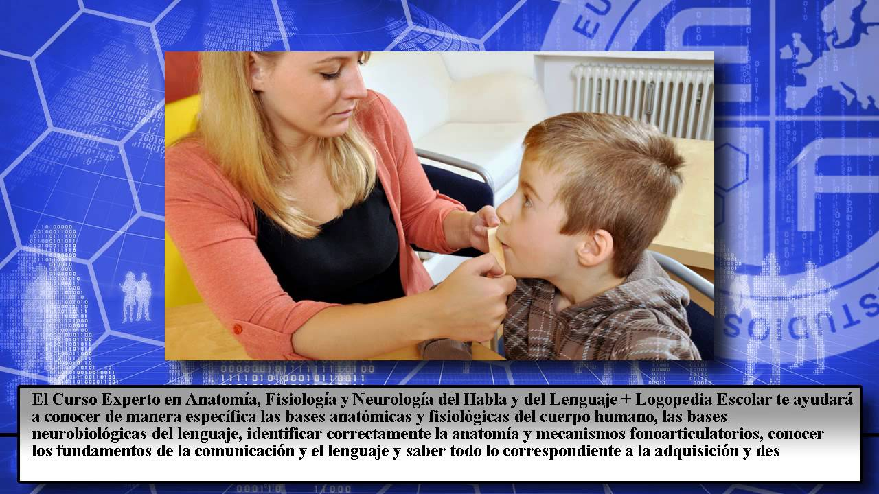 Anatomia Fisiologia Neurologia Logopedia Escolar - Cursos Online ...