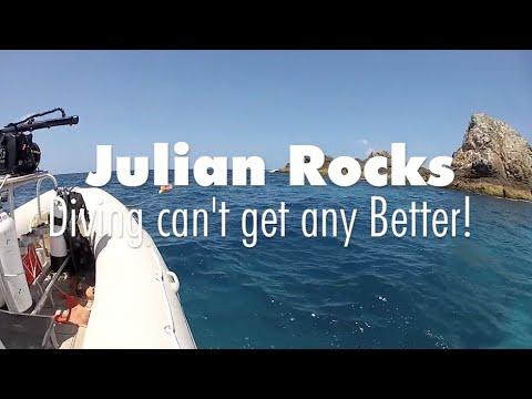 Byron bay diving julian rocks marine reserve christmas - Dive byron bay ...