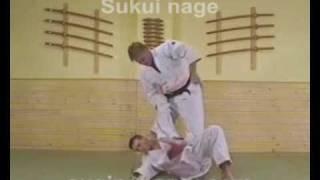 TE-WAZA (Técnicas de Hombro-Brazos). Judo