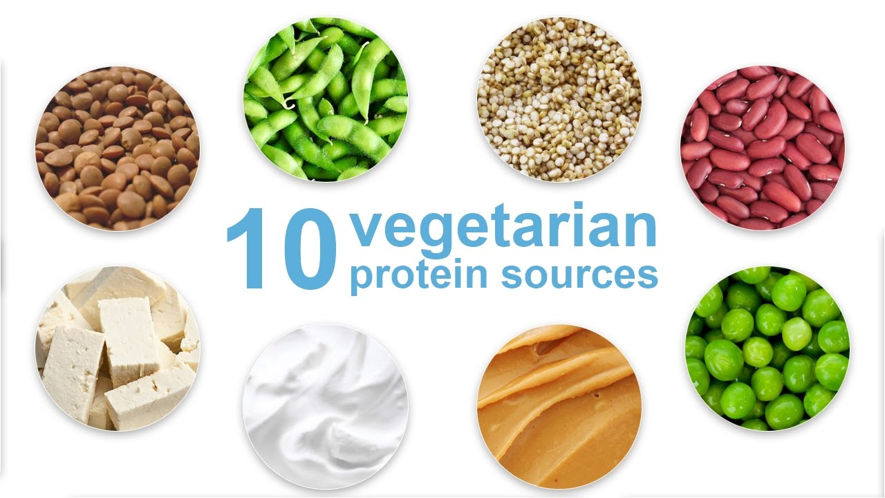 Top 10 Vegetarian Protein Sources - YouTube