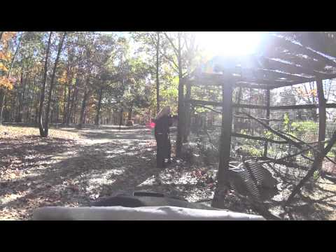 Wilson's Wild Animal Park (1 of 2)