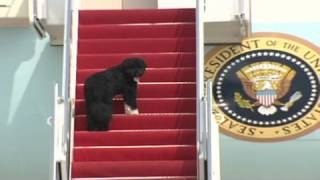 CNN: Bo goes on birthday trip with Obama