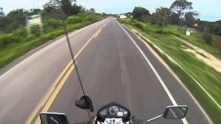 Viajando de moto pelo Piauí (PI-130) - Jumentos no meio da pista.