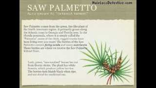saw palmetto natural treatment to help stop hair loss and regrow your hair with no side effects