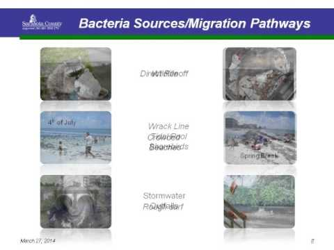 CHNEP Watershed Summit: Sarasota County's Multi-Jurisdictional Beach Bacteria Action Plan