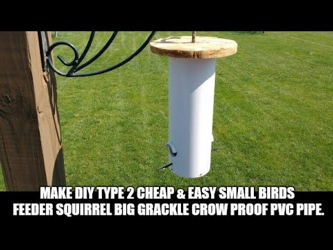 Make DIY Type 2 Cheap & Easy Small Birds Feeder Squirrel Big Grackle Crow Proof PVC Pipe & Wood Top