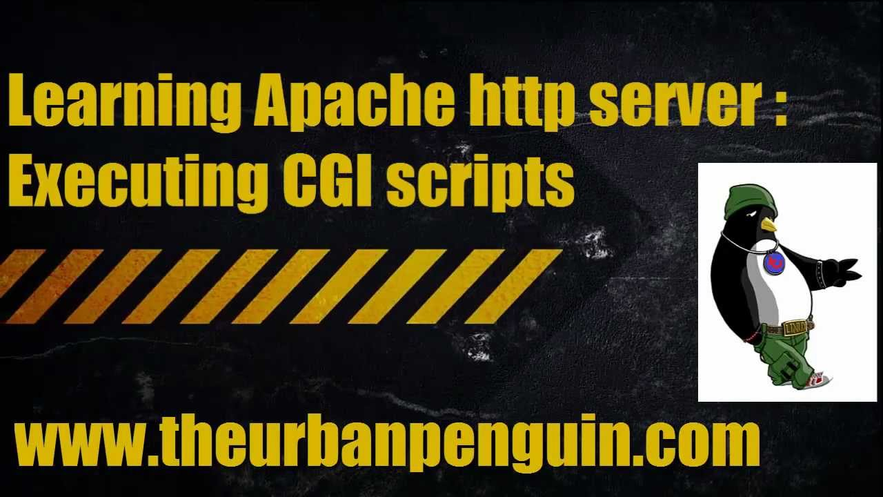 Learning Apache http server - Executing CGI scripts #1
