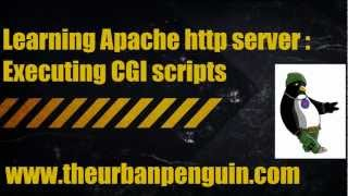 Learning Apache http server - Executing CGI scripts Mp3