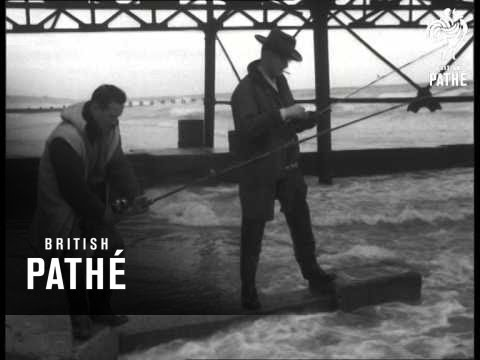 Angling Competition - Shore Fishing (1957)