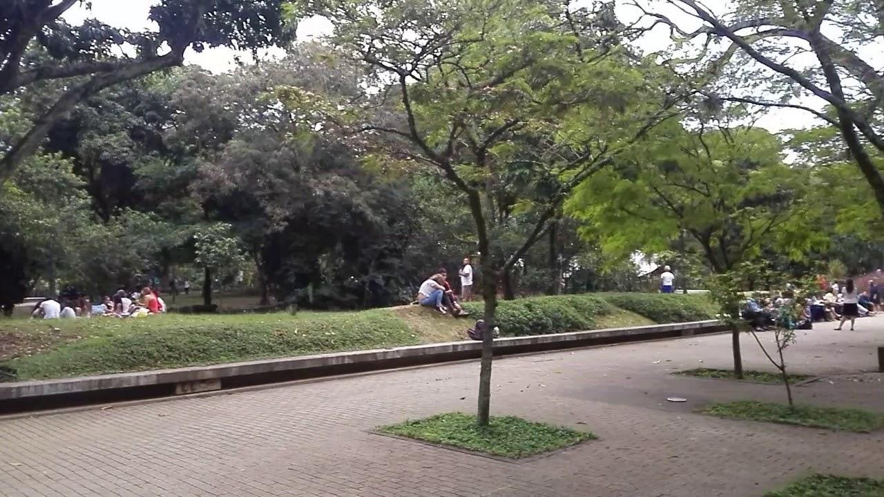 Jard n bot nico de medellin youtube for Bodas en el jardin botanico medellin
