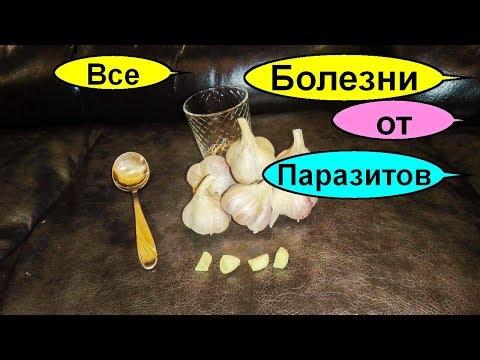 Очищение организма чесноком. Рецепт Чингисхана. Как избавиться от паразитов дома за 1 ночь
