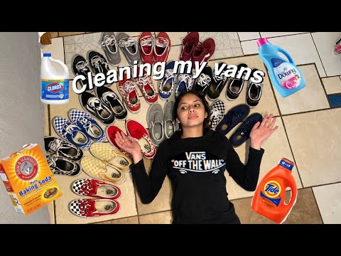 CLEANING MY VANS COLLECTION