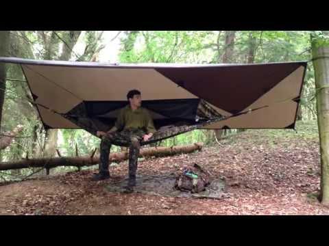 Solo wild woodland hammock camp