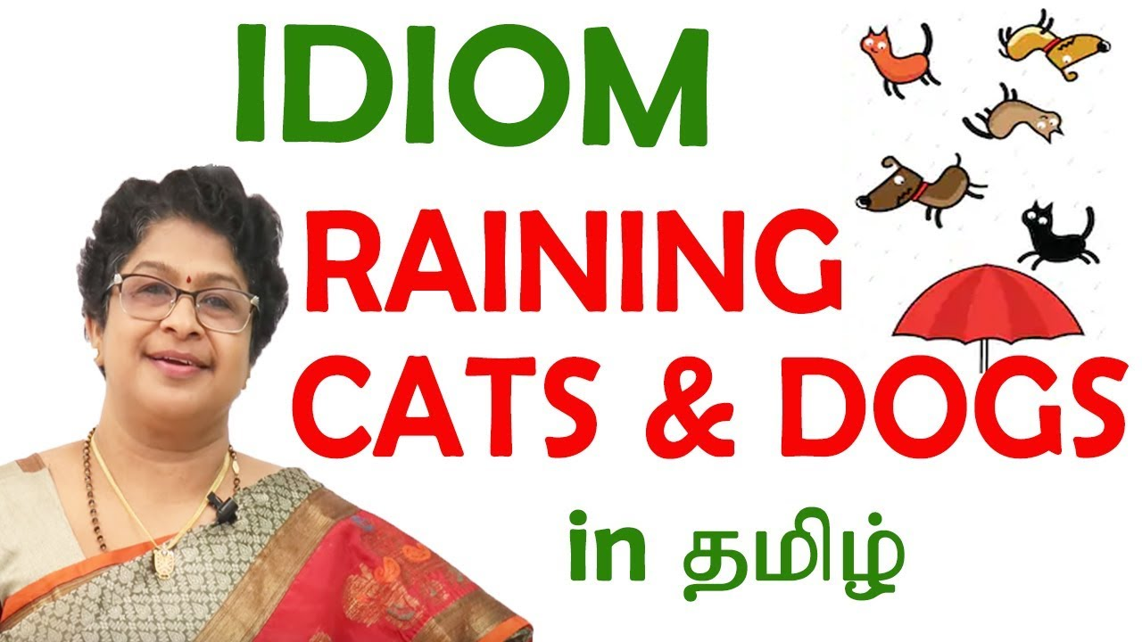 Raining Cats And Dogs Idiom Meaning English Idioms In Tamil Idiom 05 Youtube