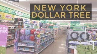 Dollar Tree New York