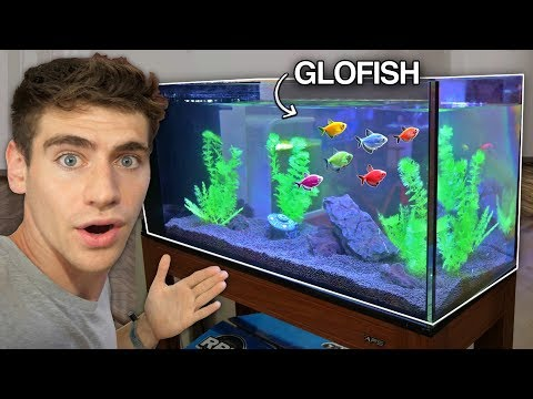 *NEW* GLO-FISH AQUARIUM!!