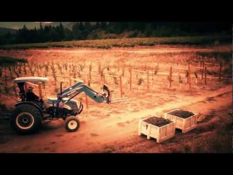 Aerial Video- Southern Oregon Wine Country- Visit Serra Vineyards For Southern Oregon Wine Tours