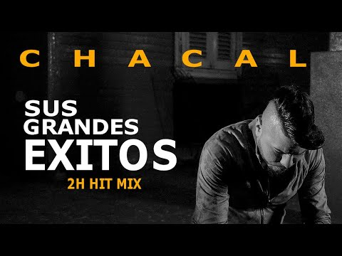 CHACAL - SUS