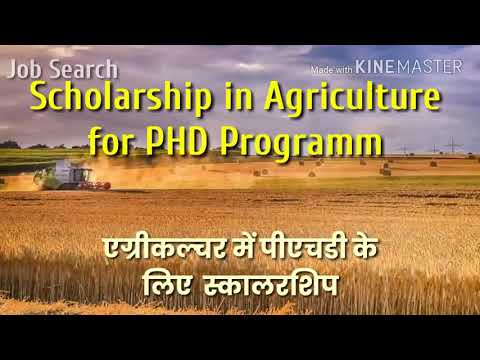 PHD PROGRAMME , scholarship details for phd,