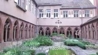 Camping Les Portes d'Alsace *** à Saverne