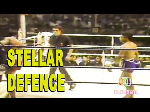 Kongtoranee's Stellar Defence
