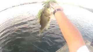 15 second fish catch!