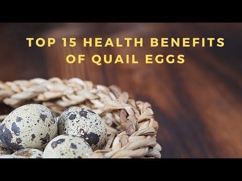 top-15-health-benefits-of-quail-eggs-i-diabetes-health-free