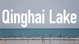 China's Largest Lake // This is Western China
