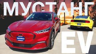 Лучший Кроссовер от Ford VS Model Y / Mustang Mach E