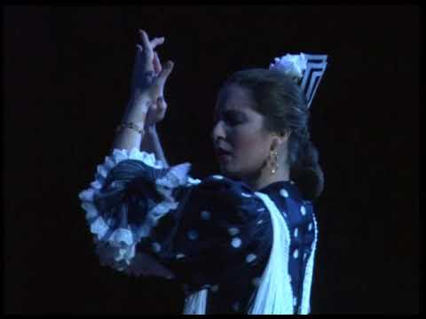 Juan Martín Flamenco Dance Company from Seville