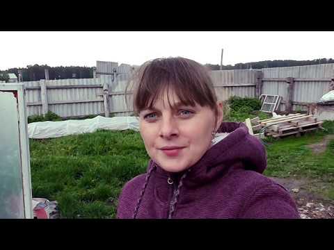 ЖИЗНЬ В ДЕРЕВНЕ. видео № 11