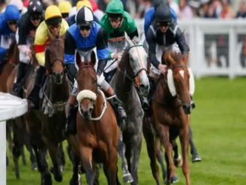 Video  Royal Ascot 2016 Full Results  All The Winners From Tuesday's Races In Berkshire