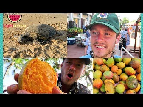 KAUAI FARMERS MARKET + FRUIT MUKBANG