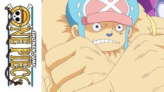 One Piece - Official Clip - Episode 812